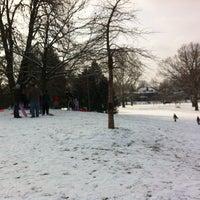 Photo taken at Buchanan Park by Mark K. on 2/3/2013