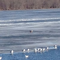 Photo taken at Mississippi River by Christine N. on 1/19/2014
