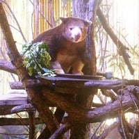 Photo taken at Dallas World Aquarium by Jeighsen ®. on 10/8/2012