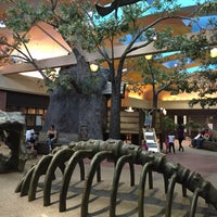 Photo taken at University Mall Tree House by Quarry on 5/7/2015
