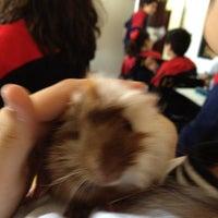Photo taken at Colegio Quetzal by Jozza M. on 11/6/2012