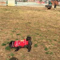 Photo taken at Memphis Dog Park by Chris M. on 12/24/2014