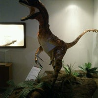 Photo taken at Museo de Historia Natural Ecatepec by Eliut A. on 10/20/2012