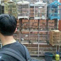 Photo taken at Pasar Burung Jatinegara by Ryo V. on 12/25/2012