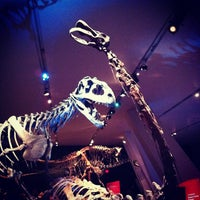 Photo taken at Royal Ontario Museum by Joseph T. on 2/3/2013