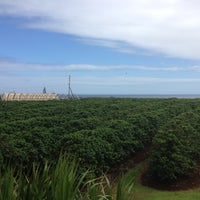 Photo taken at Kauai Coffee Plantation by Mark B. on 7/7/2012