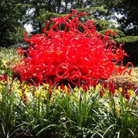 Photo taken at Dallas Arboretum and Botanical Garden by Seattle's G. on 5/19/2012