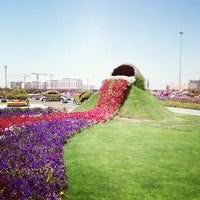 Photo taken at Dubai Miracle Garden by EMKWAN on 4/9/2013