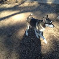 Photo taken at Carmichael Dog Park by Joel W. on 12/30/2012