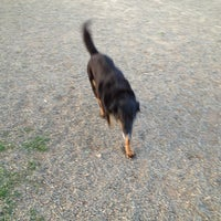 Photo taken at Carmichael Dog Park by Joel W. on 3/28/2013