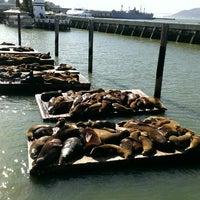 Photo taken at Pier 39 by Olga T. on 3/23/2013