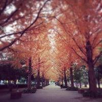 Photo taken at 美薗中央公園 by サクラモチ☻ on 11/27/2014