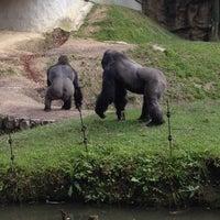 Photo taken at Zoo Schmiding by Ece I. on 7/10/2014