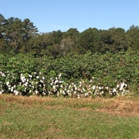 Photo taken at Madrac Farms by Nicole P. on 10/20/2012