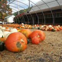 Photo taken at Mackey's Orchard by Cindy M. on 10/1/2013
