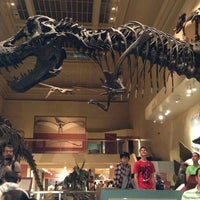 Photo taken at National Museum of Natural History by Gwen Kawena on 5/27/2013