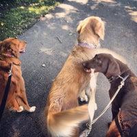 Photo taken at Windsor Heights Dog Park by Lindsay A. on 9/21/2013