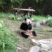 Photo taken at Xiang Jiang Safari Park, Guangzhou by Katty C. on 1/12/2013