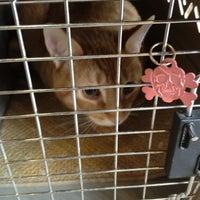 Photo taken at Millburn Veterinary Hospital by Carolyn B. on 4/22/2013