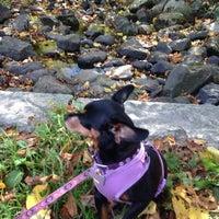 Photo taken at Callahan State Park - Dog Pond by Dawn on 10/8/2014
