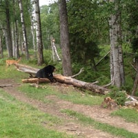 Photo taken at Zoo sauvage de Saint-Félicien by Mary S. on 8/20/2016