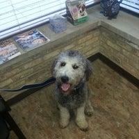 Photo taken at Duke Animal Hospital by Jessica W. on 10/23/2012
