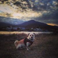 Photo taken at Corte Madera Creek by sarah p. on 1/31/2014