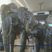 Photo taken at Indira Gandhi International Airport (DEL) by Alaistair D. on 12/13/2012