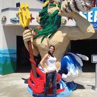 Photo taken at SEA LIFE Aquarium by Amber B. on 5/30/2013