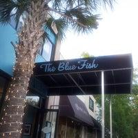 Blue fish oyster bar and restaurant avondale for Blue fish jacksonville