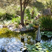 Photo taken at Ruth Bancroft Garden by Andrew S. on 7/13/2014