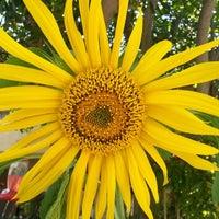 Photo taken at Camarillo Oaks by Angela M. on 7/31/2014