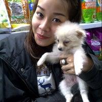 Photo taken at VRDnal Pet Shop - Kelapa Gading by Michella Z. on 12/27/2012