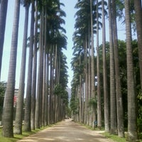 Photo taken at Jardim Botânico do Rio de Janeiro by Neto S. on 1/8/2013