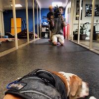 Photo taken at San Roque Pet Hospital by Luigi Francis Shorty R. on 3/4/2014