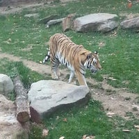 Photo taken at Philadelphia Zoo by Phil F. on 11/4/2012