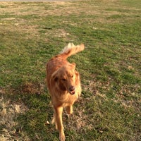 Photo taken at Noblitt Park by cathy g. on 12/3/2012