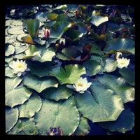 Photo taken at Борисова градина by Denitsa M. on 6/23/2013