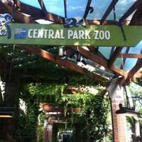 Photo taken at Central Park Zoo by Денис T-Killah А. on 6/19/2013