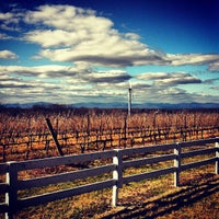Photo taken at Barboursville Vineyards by DizzyTaco™ on 2/28/2013