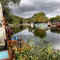 Photo taken at Ağva by Firat B. on 9/14/2013