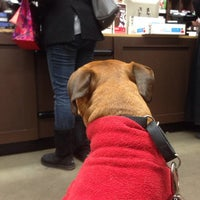 Photo taken at Unleashed by Petco by Einat B. on 12/24/2013