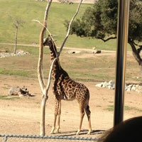 Photo taken at San Diego Zoo Safari Park by Ben F. on 12/28/2012