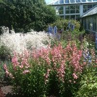 Photo taken at Dunedin Botanic Garden by Cyca N. on 1/26/2013