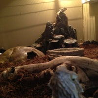 Photo taken at Exotus Serpenti by Koen on 7/1/2013