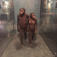 Photo taken at Hall Of Primates by Gretchen M. on 6/22/2015