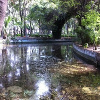 Photo taken at Parque México by Ce H. on 3/21/2013