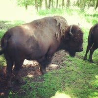 Photo taken at Northwest Trek Wildlife Park by Meliss & Woody J. on 7/8/2013