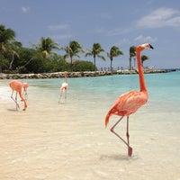 Photo taken at Renaissance Aruba Resort And Casino by Samer Y. on 10/20/2012