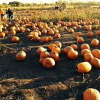 Photo taken at County Line Orchard by Yani S. on 10/20/2013